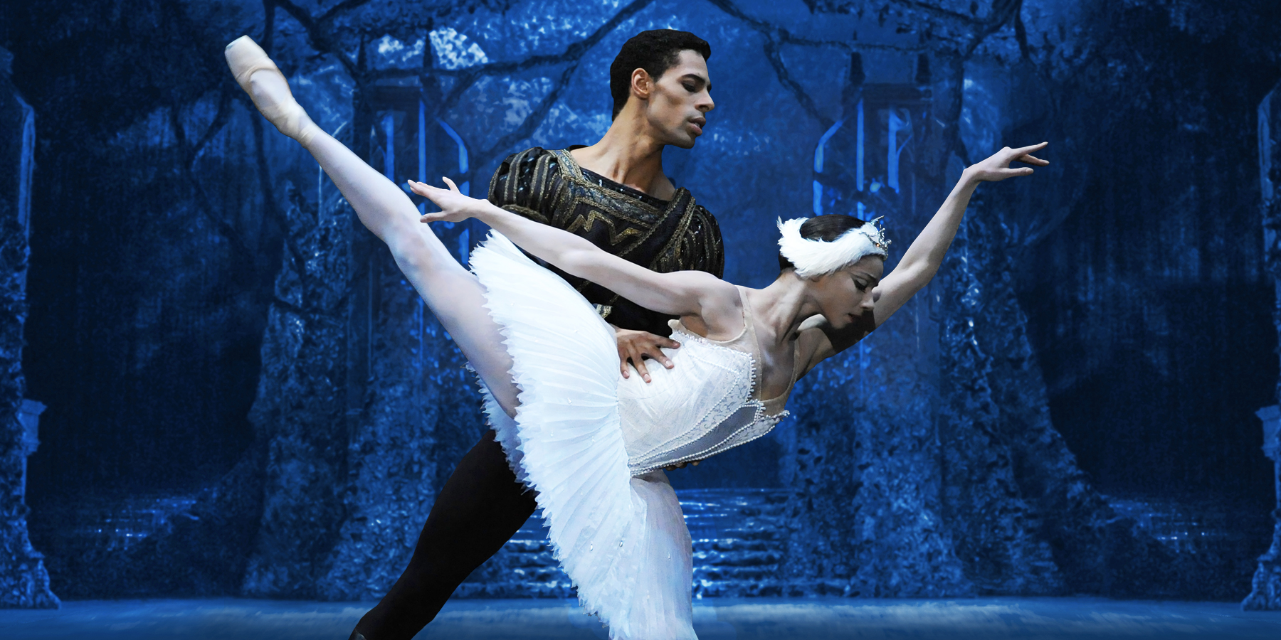 swan lake single women over 50 The description of the event, russian ballet--swan lake, is available only to members.