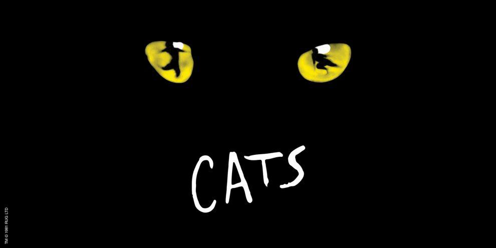 Cats-1800x900New2