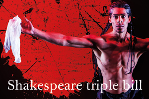BRB-new-Shakespeare-triple-300x200
