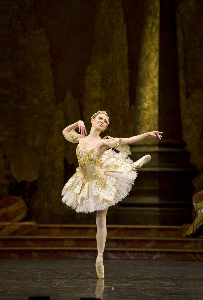 birmingham royal ballet - the sleeping beauty